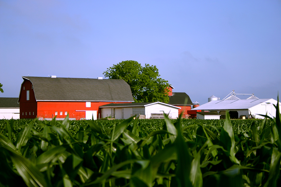 Demand For Agricultural Insurance Expected To Grow