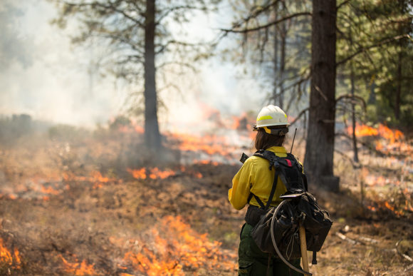 PG&E Pushes for Tax-Exempt Bond Bill for Fire Claims